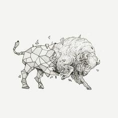 Buffalo - Kerby Rosanes