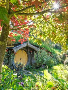 Live a day as a hobbit (New Zealand). O Hobbit, Hobbit Hole, Casa Dos Hobbits, Wonderful Places, Beautiful Places, Glamping, Cabana, Fairy Houses, Cob Houses