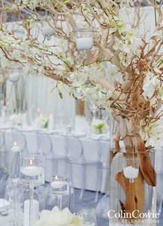 At the reception, two long banquet tables were decorated with tall arrangements of bare wood tree branches and long stemmed white orchids.