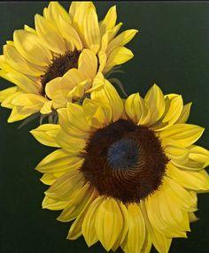 #Flowers #Girasole #Toscana #Tuscany