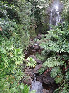 Maui, HI. Road to Hana