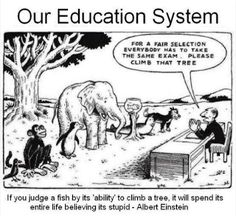 Our Education System - standardised testing