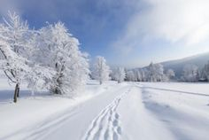 8 Beautiful Snow Scenes from Literature | Mental Floss