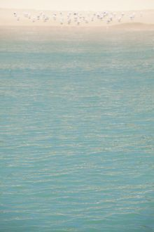 Aqua sea against the shoreline. Moreton Island, Australia.