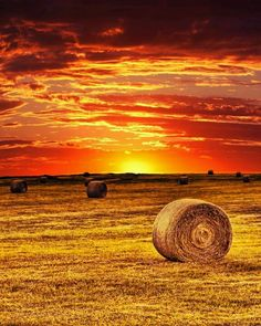 Texas sunrise - Photo by Marshall Bishop