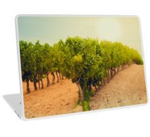 Laptop Skin with a sunny vineyard!   • Also buy this artwork on stationery, stickers, phone cases, and more. The whole collection is here http://www.redbubble.com/people/dvoevnore  #vineyard #french #france #laptop #cover #skin #stuff #travel #trip #europe