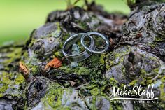 Rings on a tree