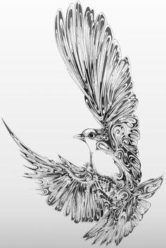 dove.jpg (628×937)