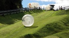 ZORBING! This will happen to me before this year is over.