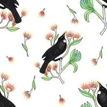 Tui bird custom fabric by bekabeesews for sale on Spoonflower Tui Bird, Pen And Watercolor, Fabric Birds, Repeating Patterns, Custom Fabric, Creative Business, Spoonflower, Craft Projects, How To Draw Hands