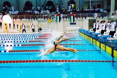 fe4777942d79 Swimming competition in Qatar Sprint Triathlon