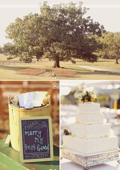 """Reasons why you'll love this wedding:  a) you are a lover of southern weddings  b) you love just a sprinkle of """"country""""  c) you are a fan of goats  <3 this whole wedding"""
