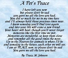 A beautiful prayer for a beautiful pet
