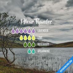I Hear Thunder - Essential Oil Diffuser Blend