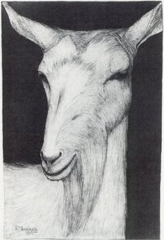 Yes, I would think a goat is fine art... Jan Mankes (1889-1920), Netherlands: Geitekop, naar links / Goat, left   Pencil, black chalk and brush in black   1915 - 280 x 250 mm