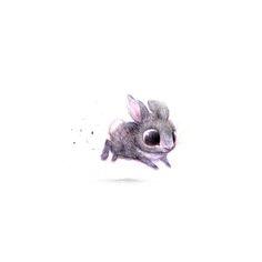 Sydney Hanson, bunny <3