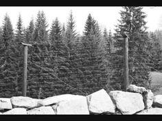 Over de Muur - Clip - YouTube