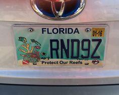 USA-Florida