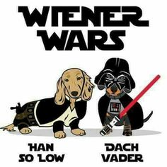 Wiener Wars. Han So Low. Dach Vader.