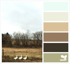 Great website for design color palette inspiration - three geese hues Scheme Color, Colour Pallette, Colour Schemes, Color Combos, Color Patterns, Color Balance, Design Seeds, Color Swatches, Color Theory
