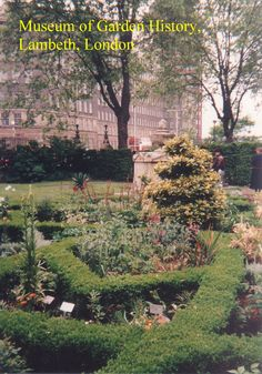 Knot Garden with tomb of Captain Bligh, Garden Museum, Lambeth (LW18-2)
