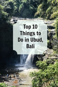 Top 10 fun and luxurious things to do in Ubud, Bali