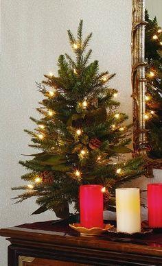 5499 4999 gki bethlehem lighting 2 foot green river spruce christmas tree pre amazoncom gki bethlehem lighting pre lit