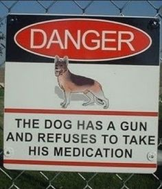 Danger: The dog has a gun and refuses to take his medication. its me you have to worry about. NOT the dog. always remember I sleep w/ the 44 when herk is gone. Funny Dogs, Funny Animals, Laugh Track, Fun Signs, Funny Bunnies, Just For Laughs, The Funny, Laughter, Funny Quotes