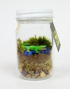 Alligator Mini Moss Terrarium by MossLoveTerrariums on Etsy, $10.00