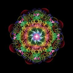 it Fourth in the Chakras series. Mandala Art, Mandala Design, Chakras, World Of Color, Environmental Art, Flower Of Life, Psychedelic Art, Fractal Art, Erotic Art