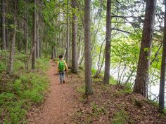I do guided hiking tours to Nuuksio National Park, and I love seeing kids in nature, so I decided to make it easier and cheaper for you to take them with you.