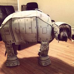 The grumpiest AT-AT you've ever seen.