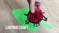Ladybug DIY for kids simple and cute craft to entertain your children
