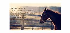 Awesome horse quotes Cute Horse Quotes, Cute Horses, Equestrian, Awesome, Animals, Pretty Horses, Animales, Animaux, Horseback Riding