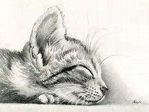 Pencil Drawings of Cool Stuff - Bing Images