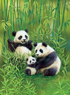 Panda's & Cub The Animals, Baby Animals, Cute Panda Wallpaper, Panda Family, Image Deco, Panda Wallpapers, Pinturas Disney, Tier Fotos, Red Panda