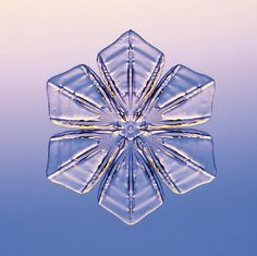 National Geographic Snowflakes Pictures: Photograph 1 (winter, Christmas)