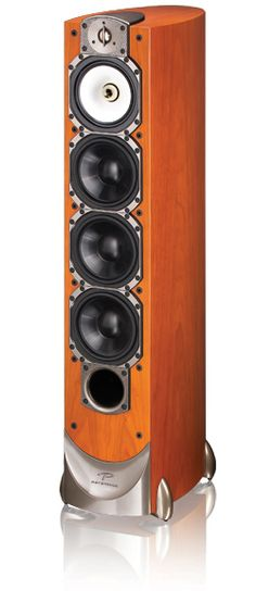 The Paradigm Studio 100s.  At the top of my list of affordable audiophile speakers.  Too replace my B&W 703s (RIP)..someday.