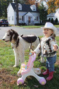 Dog Saddle   Dog Horse