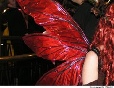 Love, love these wings!