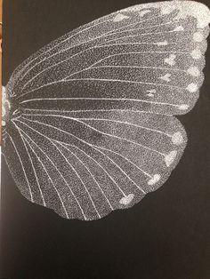 acercamiento, mariposa, detalle, puntillismo, negro, blanco