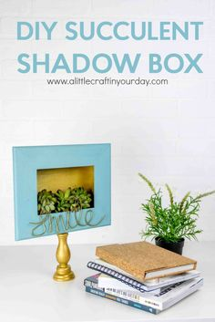 DIY Succulent Shadow