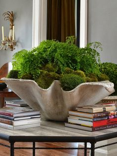 Handkerchief Planter by Savage Interior Design