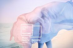 PANTONE Color of the Year 2016: Serenity & Rose Quartz