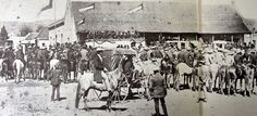 history paul kruger - Google Search South African Railways, African History, Google Search, Live