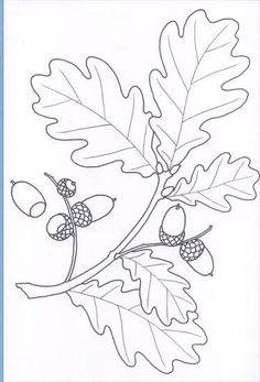 Frantic Stamper Precision Die - Gone To Seed Quilling Patterns, Felt Patterns, Fall Coloring Pages, Coloring Books, Hand Embroidery Designs, Embroidery Patterns, Leaf Template, Owl Templates, Crown Template