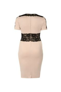 New Look Mobile | AX Curve Shell Pink Lace Insert Bodycon Dress