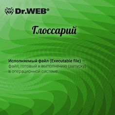 Глоссарий Dr.Web: исполняемый файл. #DrWeb