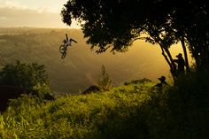 See athletes take flight with the 20 images that made it to the semi-final stage of the Wings category! Action Photography, Image Categories, Greatest Adventure, Red Bull, Tourism, Wings, Outdoor, Instagram, Turismo