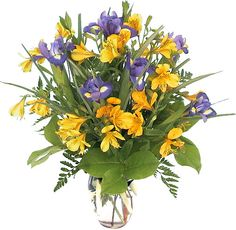 Affordable Father's Day Flowers featuring a bold vase arrangement in purple and yellow, with purple-blue irises, yellow alstroemerias and assorted foliage. Same day delivery across Canada. Yellow Flower Arrangements, Vase Arrangements, Father's Day Flowers, Yellow Flowers, Purple Iris, Floral Designs, Sunflowers, Fathers Day, Bouquet